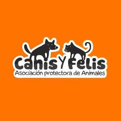 Canis y Felis