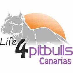 Life4Pitbulls Canarias