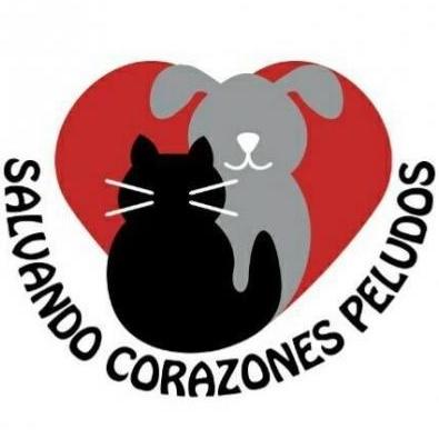 Salvando Corazones Pel.