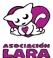 Asociación Lara Gatos