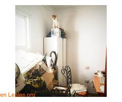 Ignacio el alpinista, busca adopción - Imagen 5