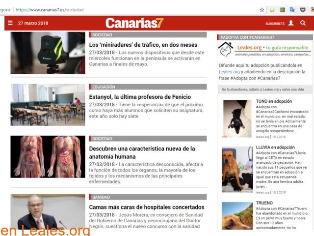 RED CANARIA DE ANIMALES SIN HOGAR - 5/10