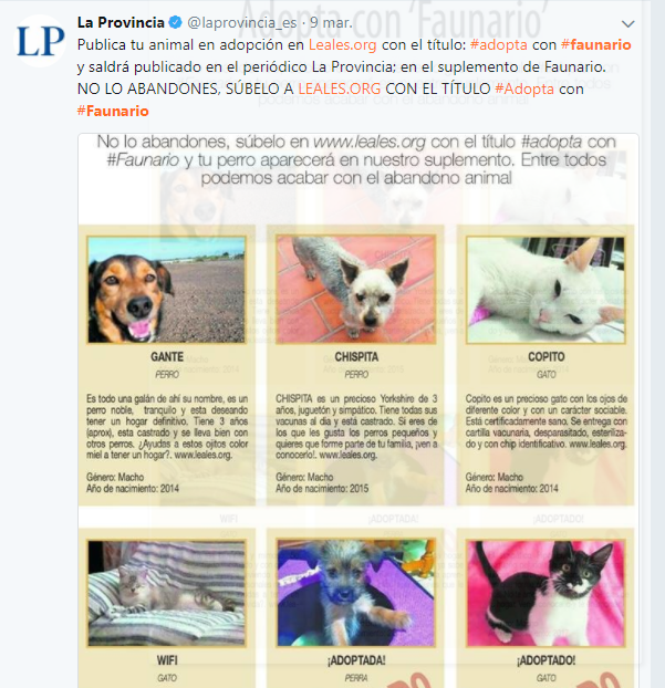 Leales.org » Red Animales sin hogar » Las Palmas - Gran Canaria ...