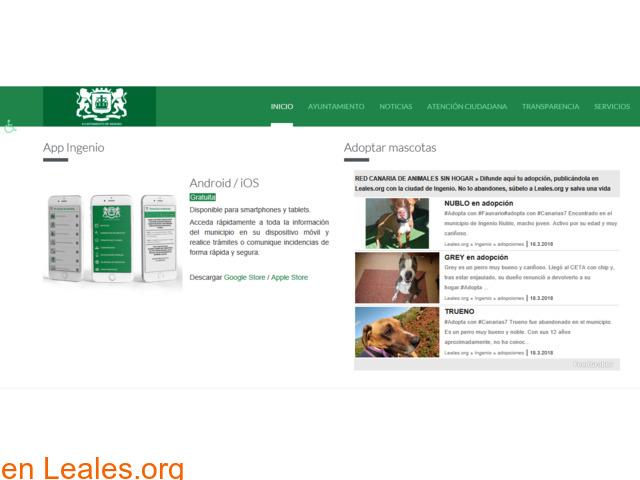 RED CANARIA DE ANIMALES SIN HOGAR - 10/10
