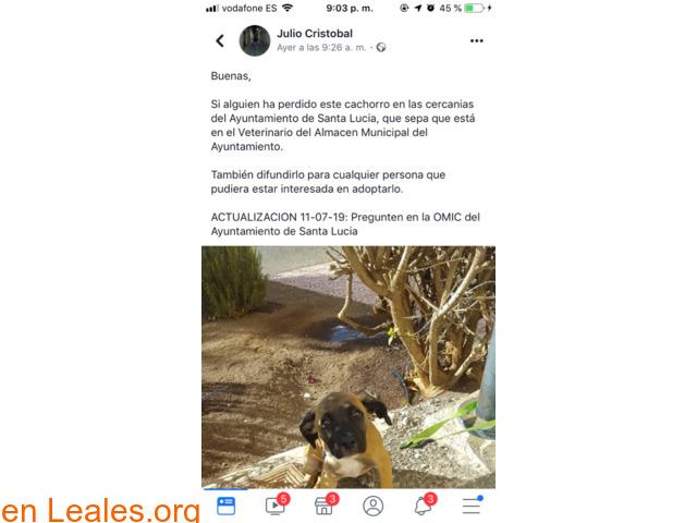 YA EN CASA - 2