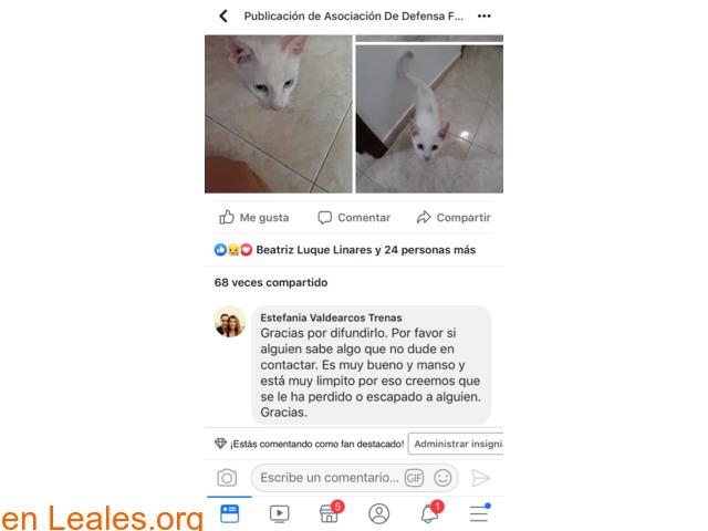 YA EN CASA A SALVO!!    VECINDARIO!