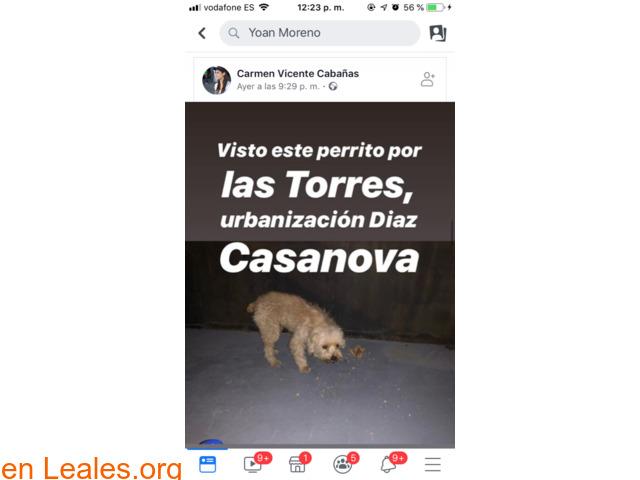 ENCONTRADO EN LAS TORRES!!  LO CONOCES??
