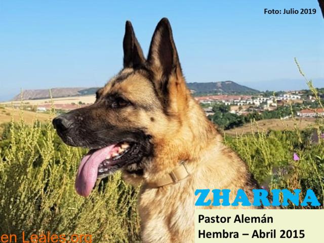 ZHARINA