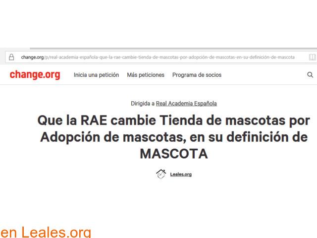 Campaña en Change.org para la RAE - 1/2
