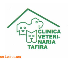 CLINICA VETERINARIA TAFIRA