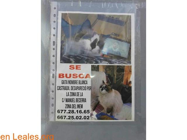 EN CASA - 2/3