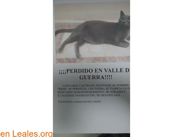 ¡PERDIDO EN VALLE GUERRA! - 1/1