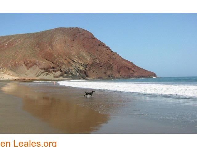 Playa de El Confital - Tenerife - 1/2