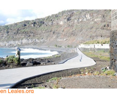 Paya de Los Guirres - La Palma