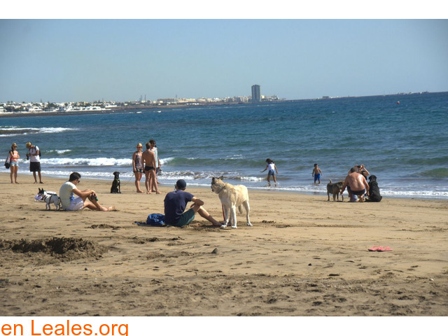 Playa de Guacimeta - Lanzarote - 1/3