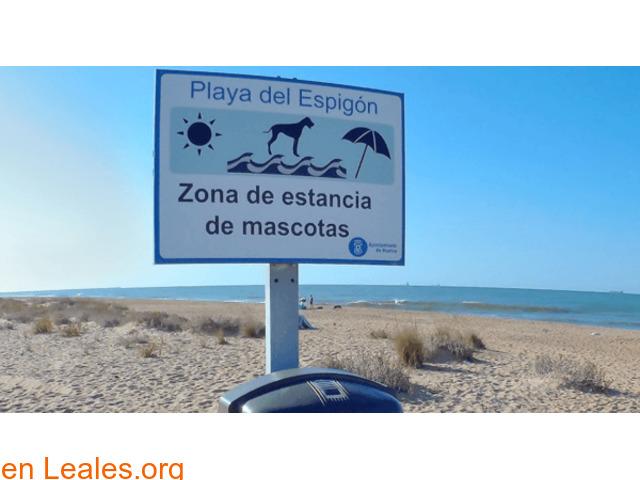 Playa de El Espigón - Huelva - 2/3