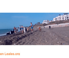 Playa de Piedra Paloma - Málaga