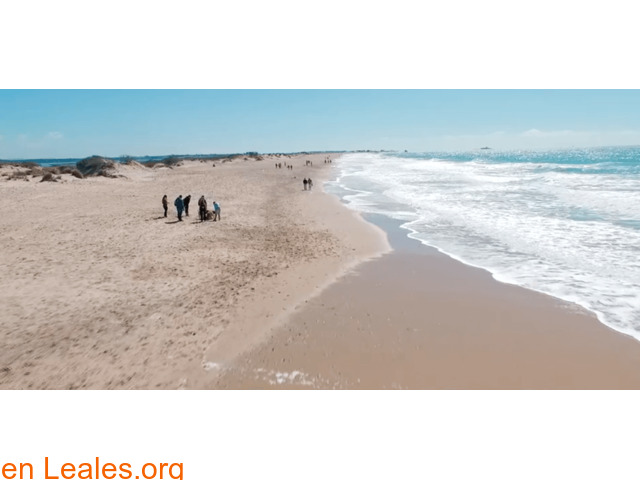 Playa Camposoto - Cádiz - 1/4