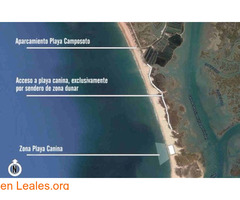 Playa Camposoto - Cádiz - Imagen 4/4