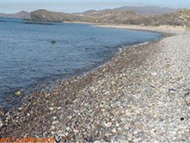 Playa de Las Cobaticas - Murcia - 3/7