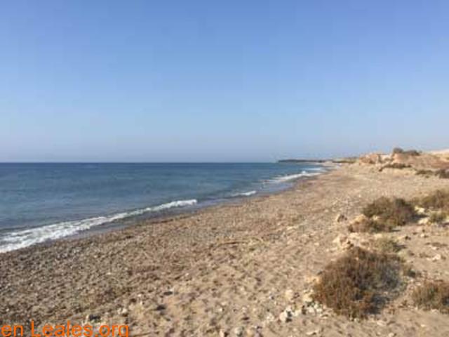 Playa de Las Cobaticas - Murcia - 4/7