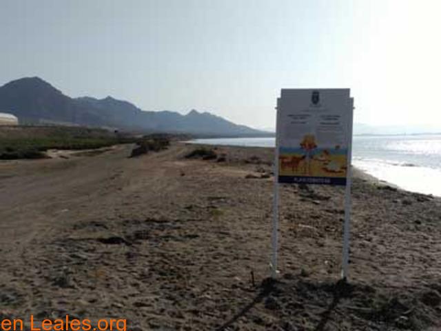 Playa de Las Cobaticas - Murcia - 5/7