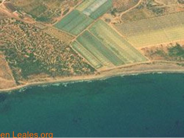 Playa de Las Cobaticas - Murcia - 7/7