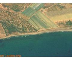 Playa de Las Cobaticas - Murcia - Imagen 7/7