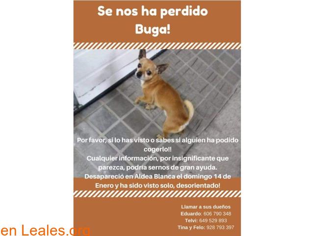EN CASA - 1/1