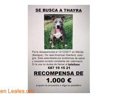 Thayra