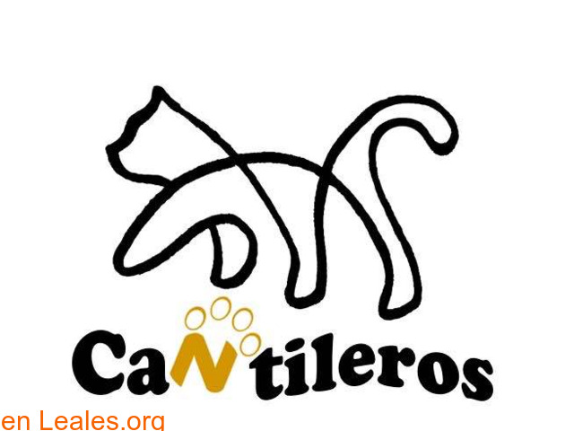 » A.P.A. Cantileros - 1