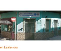 Clínica Veterinaria El Pilar-Las Cantera