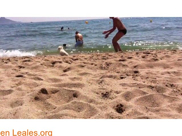 Playa La Rubina - Girona