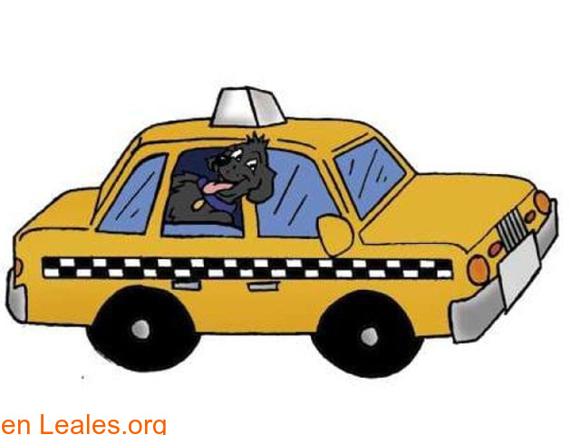 Taxi mascots