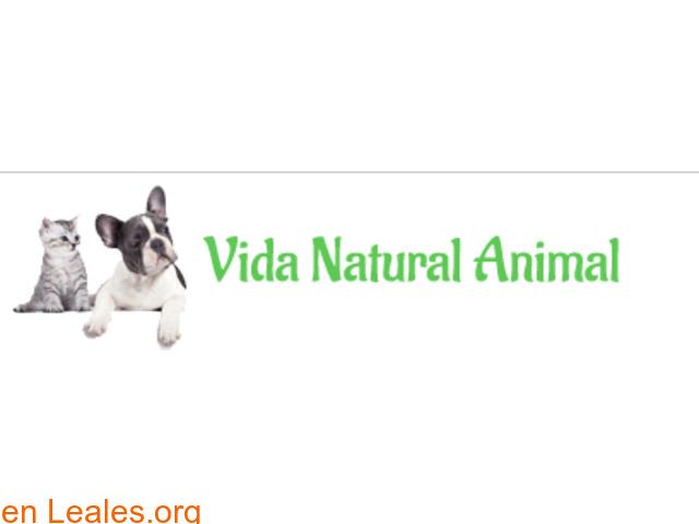 Vida natural animal