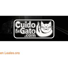cuidotugato.com