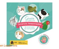 Guía de tenencia responsable de animales