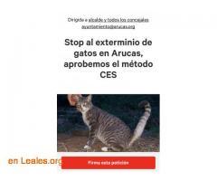 Change.org: STOP exterminio gatos Arucas