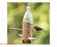 Comedero ecológico para pájaros