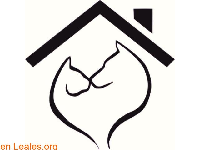¡¡¡1000 FINALES FELICES!!! en Leales.org