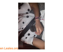 Gato en adopción urgente