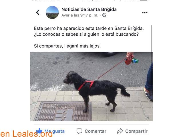 ATENCIÓN ROBADO POR QUIEN LO ENCUENTRA!!
