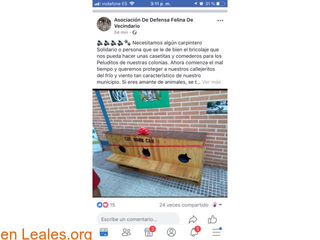 NECESITA CARPINTERO SOLIDARIO Y MADERA.