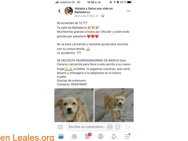 PADRINO/MADRINA DE BARCO, GC. -LANZAROTE