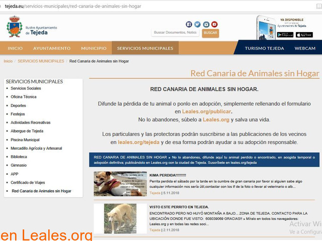 Tejeda en la Red de Animales sin hogar