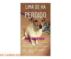 Buscamos a Lima