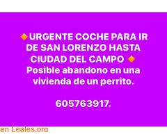 URGENTE COCHE, SAN LORENZO-CIUDAD CAMPO