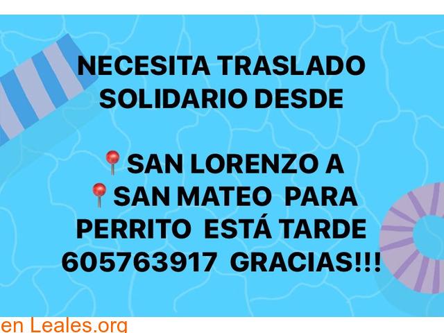 URGE TRASLADO  SAN LORENZO- SAN MATEO.