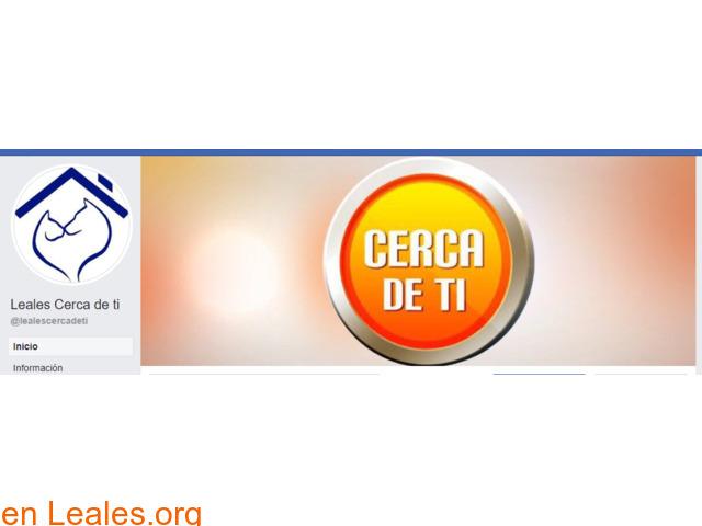 Leales Cerca de ti, en TVE