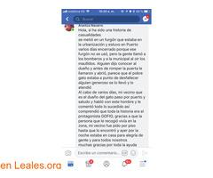 EN CASA!!     FUERTEVENTURA, LA OLIVA. - Imagen 3